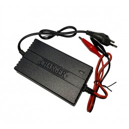 Intelligent battery charger...